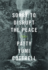 Sorry to Disrupt the Peace Cover